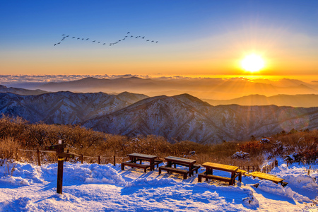 Sunrise with beautiful Lens Flare and silhouettes of birds at Deogyusan mountains in winter,South Korea.
