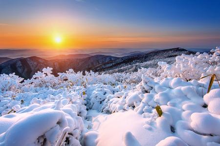덕유산 산에서 일출, 겨울에 눈이 한국에 덮여있다.