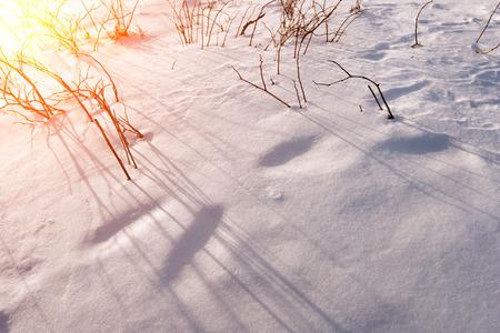 solar flare: Solar flare on snowy slopes in winter.