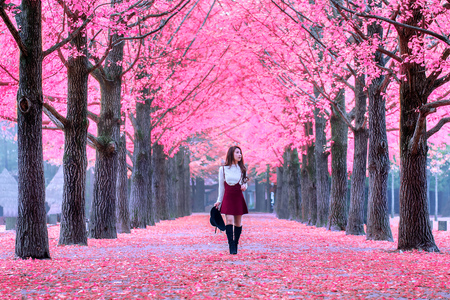 historic and vintage: Beautiful Girl with Pink Leaves in Nami Island, South Korea.