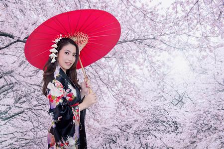 美しい若いアジア女性の赤い傘と桜の花と伝統的な日本の着物を着ています。