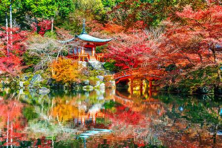 Daigoji temple in autumn, Kyoto. Japan autumn seasons. Standard-Bild