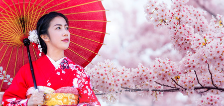 Asian woman wearing japanese traditional kimono and cherry blossom in spring, Japan. 免版税图像