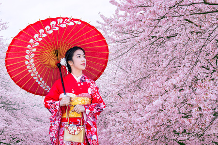 Asian woman wearing japanese traditional kimono and cherry blossom in spring, Japan. Archivio Fotografico