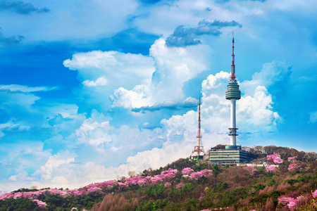 Cherry blossom in spring and seoul tower at namsan mountains, Seoul in South Korea.