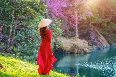 Donna che indossa la cultura del Vietnam tradizionale nel parco dei fiori di ciliegio. Archivio Fotografico