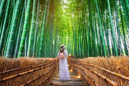 Kobieta spaceru w Bamboo Forest w Kioto, Japonia. Zdjęcie Seryjne