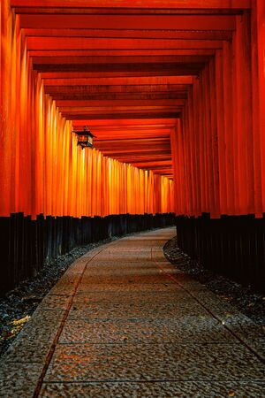 The red torii gates walkway at fushimi inari taisha shrine in Kyoto, Japan.