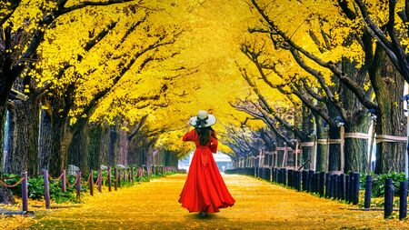 Beautiful girl walking at row of yellow ginkgo tree in autumn. Autumn park in Tokyo, Japan. Archivio Fotografico