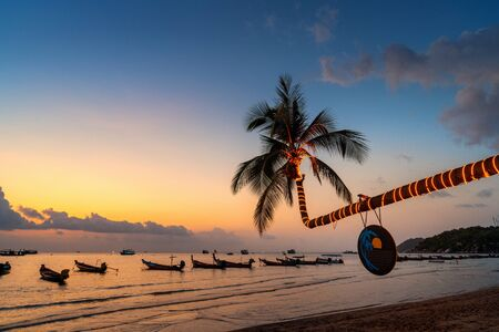 Beautiful coconut trees and sunset on the beach, Koh Tao island in Thailand.