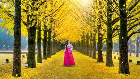 Beautiful girl wearing Korean traditional hanbok at row of yellow ginkgo tree in Nami Island, South Korea.