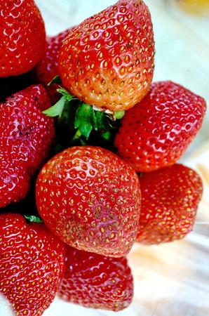 photo story: Stock Photo - Khun Chang Khian Highland Research Station Chiang Mai, Thailand ,photo of Story berry