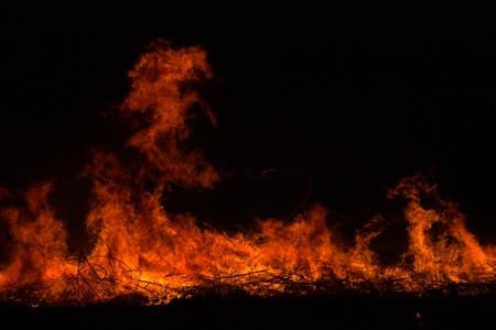 resplandor: Las ramitas quema en el parque en Tailandia desastre en el bosque arbusto con propagación del fuego en los bosques secos.