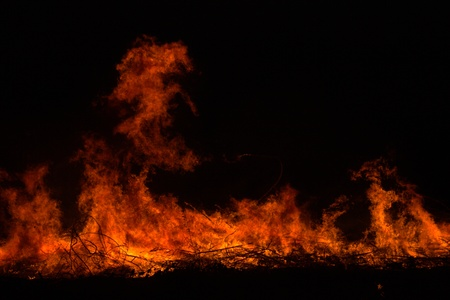 arsonist: Twigs burning at park in thailand disaster in bush forest with fire spreading in dry woods. Stock Photo