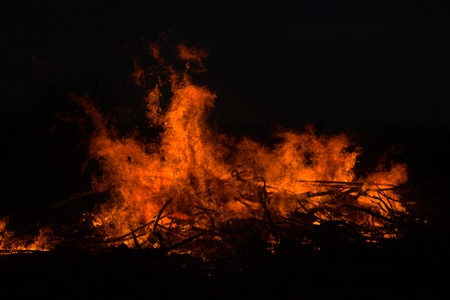 pyromania: Twigs burning at park in thailand disaster in bush forest with fire spreading in dry woods. Stock Photo