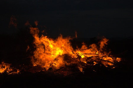 burning bush: Twigs burning at park in thailand disaster in bush forest with fire spreading in dry woods. Stock Photo