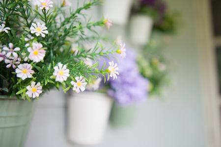 Vaso di fiori Archivio Fotografico