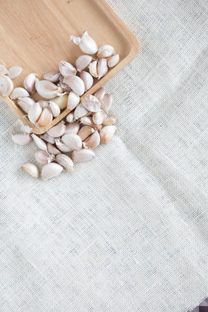 garlic , onion and fabric texture Stock Photo
