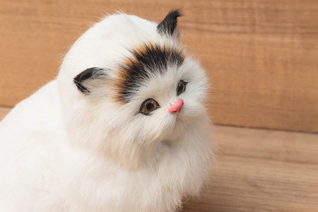 doll  White cat  on wooden  background.