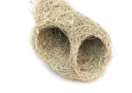 weaver bird: Close up Baya weaver bird nest, skylark nests on white background.(select focus front skylark nests ) Stock Photo