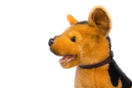 plush toy dog on white background,Dog Plush toy for children.