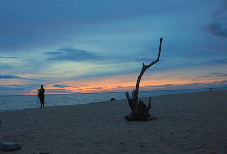 dry wood and cameraman on the beach, Sunrise morning time before and Colorful sky. Select focus dry wood with shallow depth of field, Soft focus, noise and grain due long exposure.