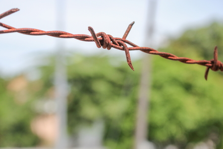 close up rusty and grunge barbed wire. Select focus with shallow depth of field