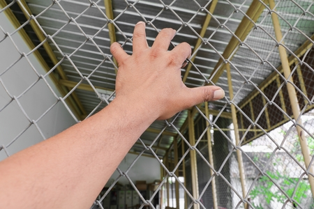 Hand with steel mesh fence  in Jail concept of life imprisonment, Select focus with shallow depth of field.
