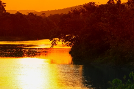 reflection river and shadow tree in water beautiful sunset nature Stock Photo