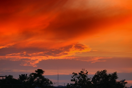 sunset beautiful colorful landscape and silhouette tree in sky twilight time 스톡 콘텐츠