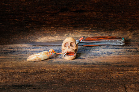 skull on wood in Halloween day concept on old vintage wooden background. still life style with copy space add text ( full High definition  Photo)