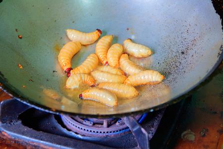 worm palm weevil red or Sago beetle  fried in pan (Rhynchophorus ferrugineus) Popular food larva Southern Thailand