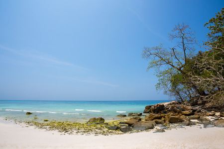 untouched: Untouched tropical beach in Phang Nga Province, Thailand : Koh Ta Chai