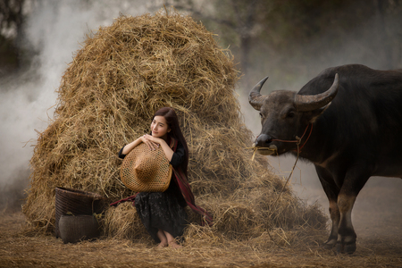 Asian woman farmer with a buffalo in the field of the countryside of Thailand Stock Photo