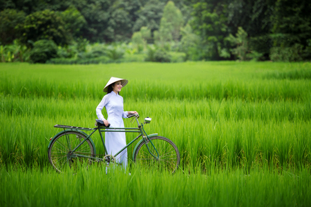Asian beautiful woman with Vietnam culture traditional in green rice farm Stock Photo