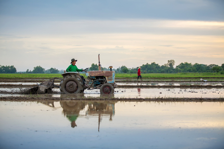 Asian farmer in tractor preparing land with seedbed cultivator, sunset Stok Fotoğraf - 75498664