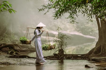 伝統的なドレスを着たベトナムの女の子は、ベトナムのコミュニティで小川を横切るハーブと蓮とバスケットを運んでいます。