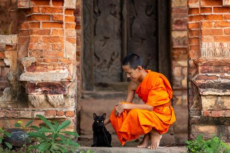 Novice Monk y los gatos no viven con el destino, sino que viven con inteligencia. Foto de archivo