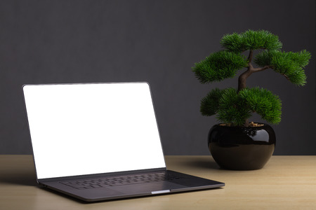 Laptops with bonsai on the table The backdrop is a dark gray background. Bonsai concept adorns the table to enhance the aura.