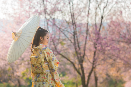Asian beautiful woman wearing traditional japanese kimono and cherry blossom in spring, Japan.