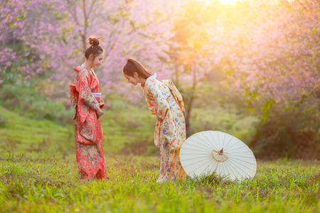 Asian beautiful woman wearing traditional japanese kimono and cherry blossom in spring, Japan greetings. Stock fotó
