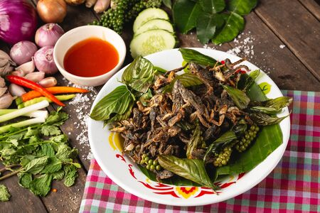 Fry species of a small green frog, Thai Esan local food, Thailand Reklamní fotografie