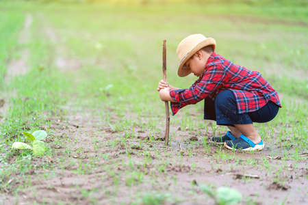 Asian Little boy use wood to dig the ground to try to plant trees, Concept Earth day