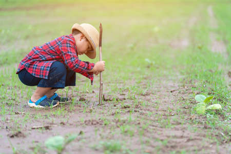 Asian children dig up the soil to plant trees, Concept Earth day
