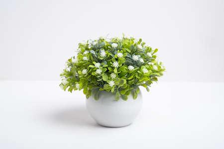 Plastic flower in a vase for decoration on white background, fake flower