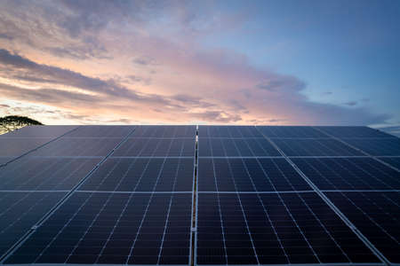 Solar panels against near sunset background. photovoltaic modules for renewable energy for clean energy production concept