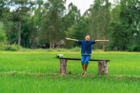 Happy little girl in rice field, countryside of Thailand Stock Photo