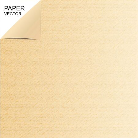 Textura de papel o de fondo marrón Ilustración de vector