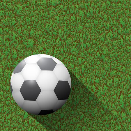 pelota de futbol: Balón de fútbol en el campo verde y largas sombras.