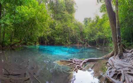 Unseen Emerald Pool locate in deef forest of national park Krabi in Thailand. photo
